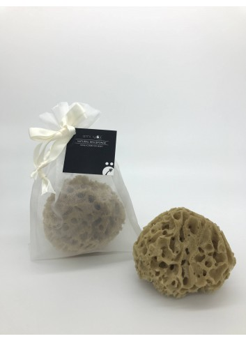 Ami iyok Natural Sea Sponge for Body